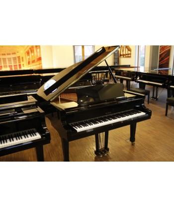 PETROF PV Grand Piano (black)