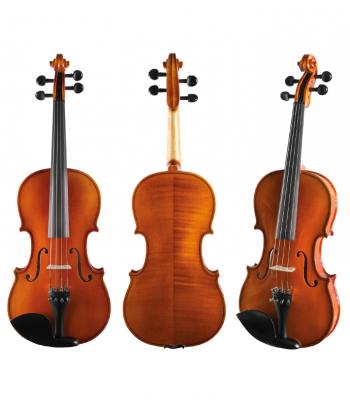 4/4 violin Strunal 920 outfit